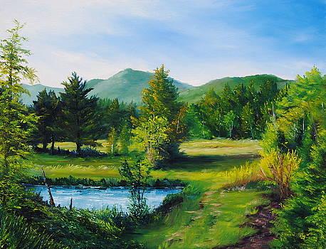 Farm Shadows by Jessica Fligg