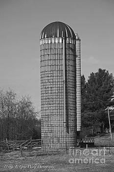Elaine Mikkelstrup - Farm Silo