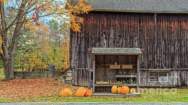Farm Stand Etna New Hampshire by Edward Fielding