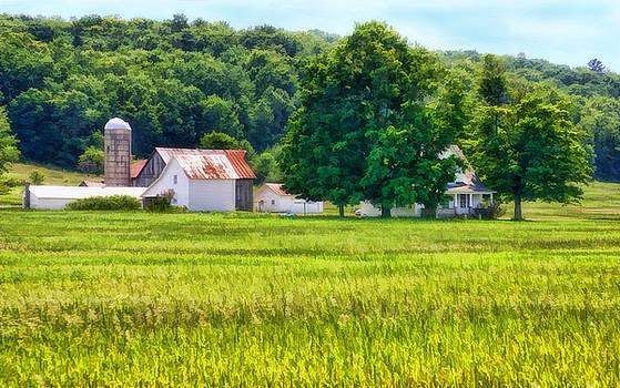 Farm USA by Joan Bertucci