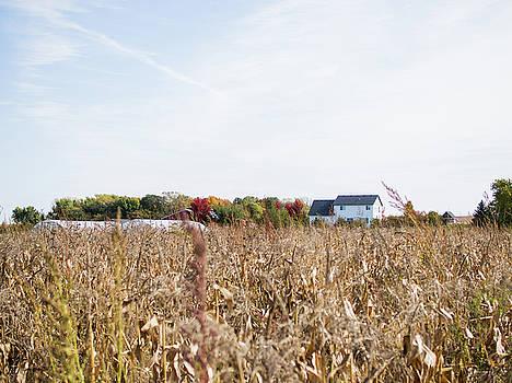 Farm by Whitney Leigh Carlson