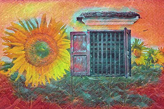 Debra and Dave Vanderlaan - Farm Window to the Sunflower Fields