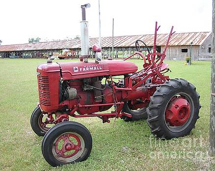 Farmall Tractor in Red by Dodie Ulery