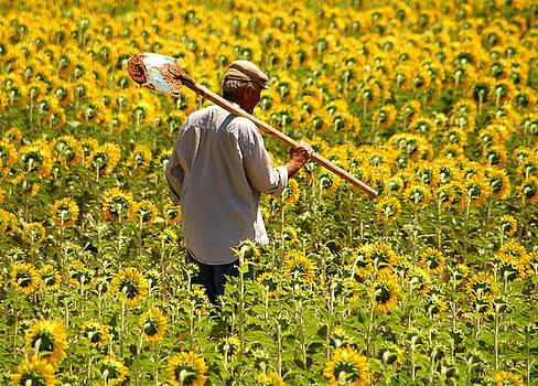 Farmer by Kobby Dagan