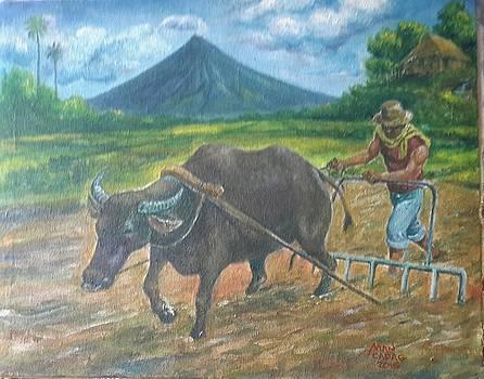 Farmer_2 by Manuel Cadag