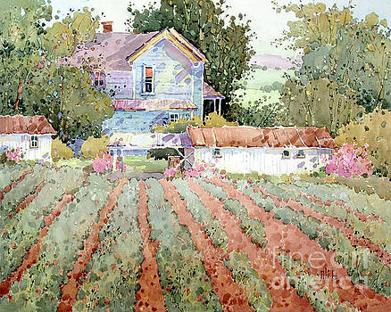 Farmhouse I Saw in Virginia by Joyce Hicks