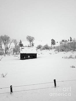 Farmhouse in Snow by Katrina Perekrestenko