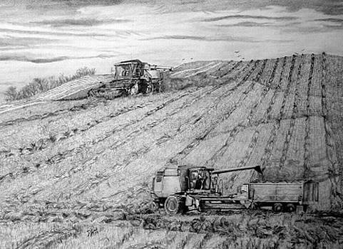 Farming by Dean Herbert
