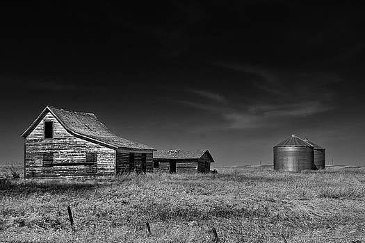 Farming Life Mono 1 by Celine Pollard
