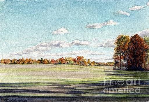 Farmington Field by Michael Martin