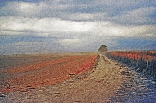 Steve Ohlsen - Farmland 3