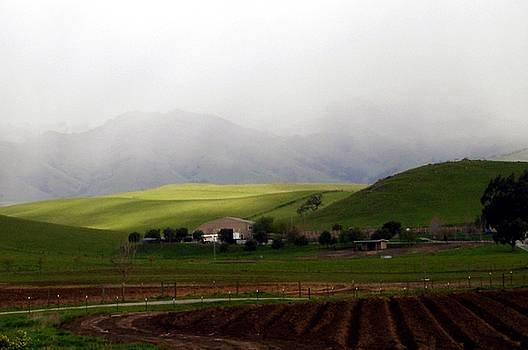 Farmland in California Winter by Lorrie Morrison