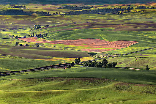 Farmland in the Palouse by Jerry Fornarotto