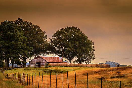 Farmland Morning by Barry Jones