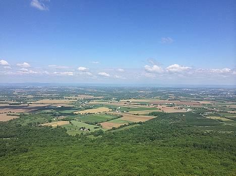 Farms in Pennsylvania by William Sullivan