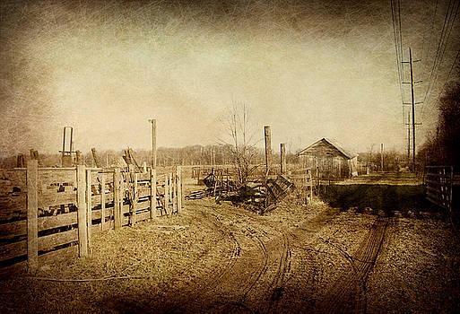 Farmstead in Sepia by Cynthia Lassiter