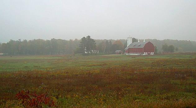 Farmstead in the Autumn Fog by Denise   Hoff