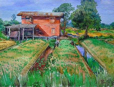Farmwork Thailand. by Hopebaby Pradit