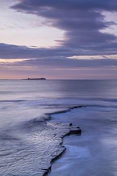 David Taylor - Farne Island View