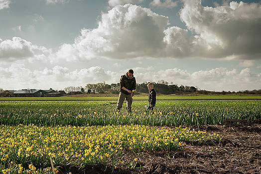 Father and son working on the flower fields series by Steppeland -