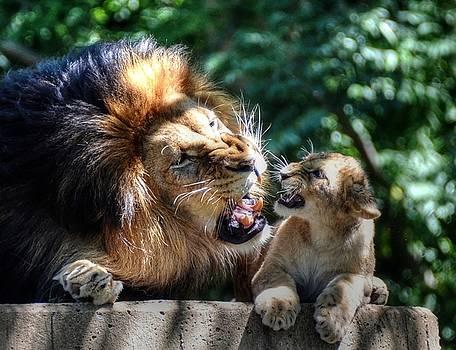 Father teaching son by Ronda Ryan