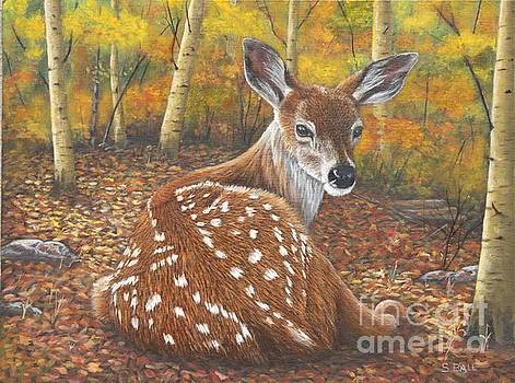 Fawn by Sid Ball