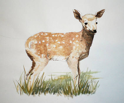 Fawn by Theresa Higby