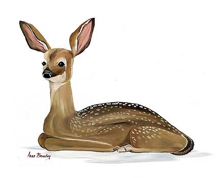 Fawn with no Background by Anne Beverley-Stamps