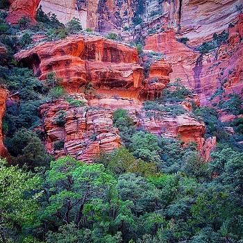 Fay Canyon Alcove, Sedona, Arizona by Flying Z Photography by Zayne Diamond