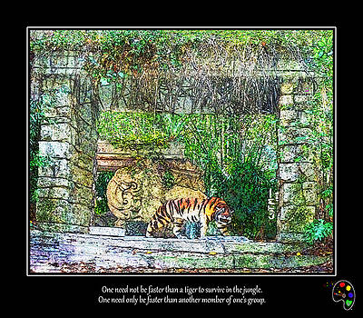 Fear of Tigers by Mickey Wright