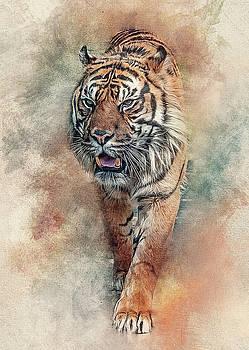 Fearless by Brian Tarr