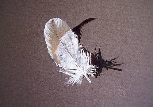 Feather and shadow 1 by Elena Kolotusha