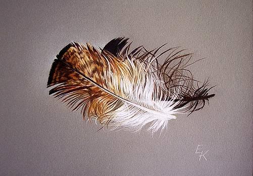 Feather and shadow 2 by Elena Kolotusha