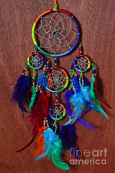 Feather Dreamcatcher by Tracy Hall