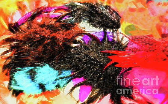 Feathers by Colin Cuthbert