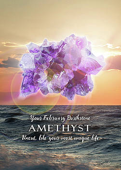 February Birthstone Amethyst by Evie Cook