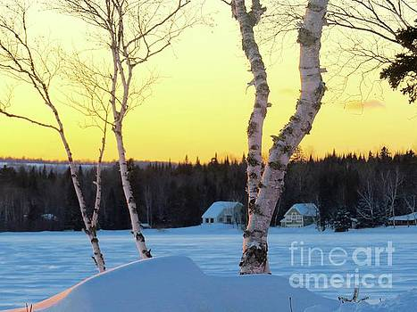 February by the lake by Brenda Ketch