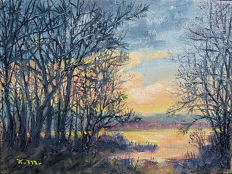 February Sky by Kathleen McDermott