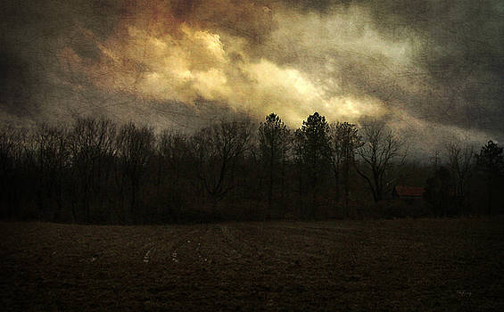 February Storm by Cynthia Lassiter