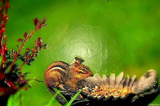 Feed The Chipmunk by Larry Moore