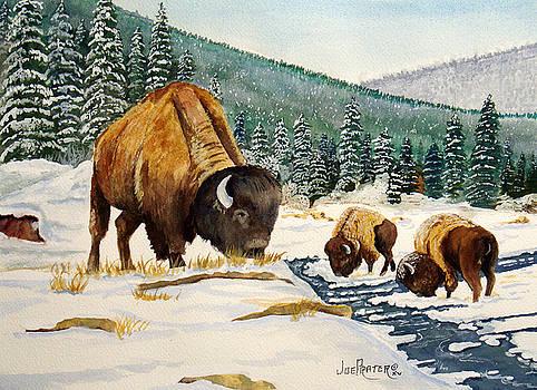 Feeding Buffalos by Joe Prater