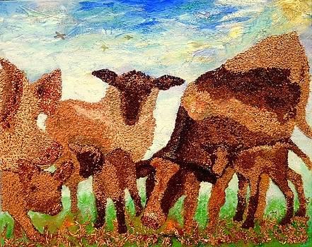 Feeding Our Animals by Naomi Gerrard