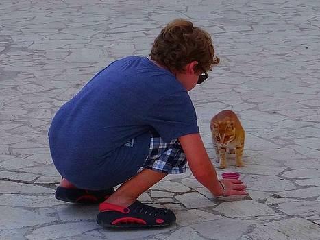 Feeding the stray cats by Exploramum Exploramum