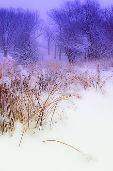 Judith Barath - Feel of Cold Land