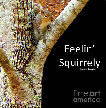 Feelin' Squirrely by Gardening Perfection