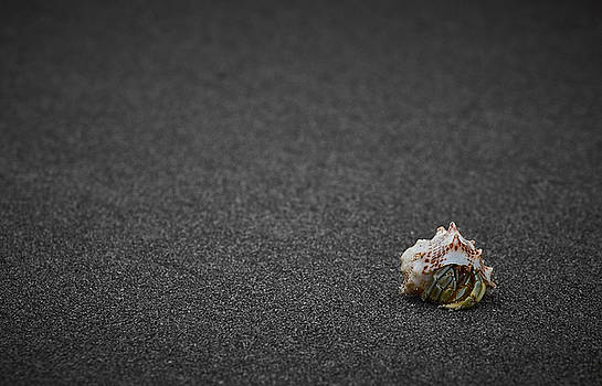 Feeling Lonely by Richard Espenant
