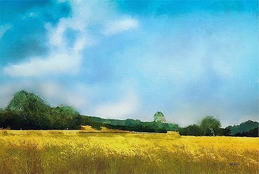 Felder  by Wolfgang Schweizer