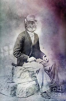 Feline Gentleman by Angel Ciesniarska
