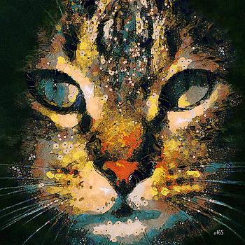 Feline Magic by Antonella Torquati