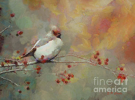 Female Cardinal - Feathered Friends Collection  by Elizabeth Coats